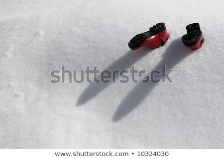 carro · enterrado · neve · céu · casa · inverno - foto stock © sahua