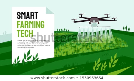 mezőgazdaság · kukorica · vetés · emberi · kéz · tart · mag - stock fotó © xedos45