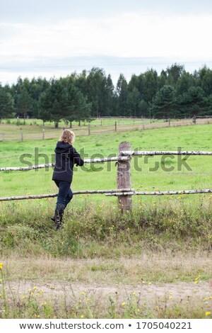 Frau Zaun Ackerland Bäume Jeans Stock foto © photography33