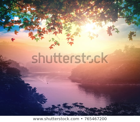 Early Autumn Trees Stock photo © ca2hill