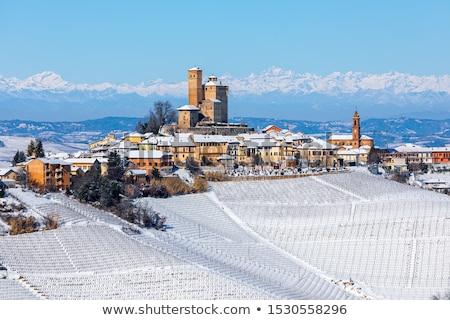 итальянский города снега Италия традиционный домах Сток-фото © rglinsky77