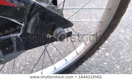Bicycle Wheel Tire Mounted Bike Gear Spokes Metal Rubber Stock photo © cboswell