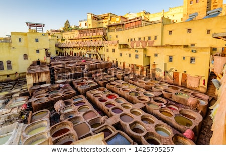 Tannery in Fez, Morocco Stock photo © Hofmeester