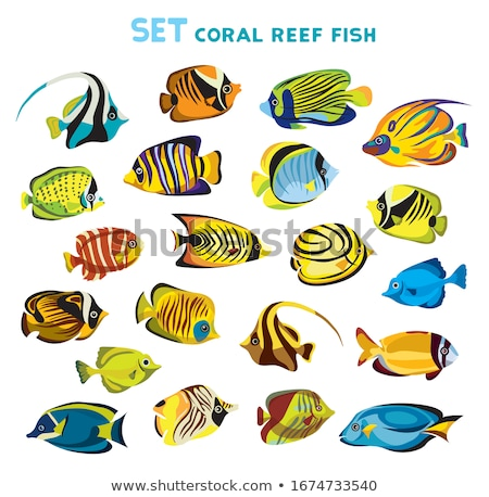 Marine life with tropical fish, vector illustration  Stock photo © carodi