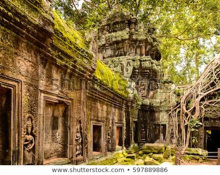 Ancient Ta Prohm or Rajavihara Temple Stock photo © tuulijumala