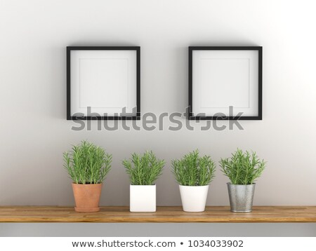 Two Square Posters hanging on the art gallery wall Stock photo © stevanovicigor