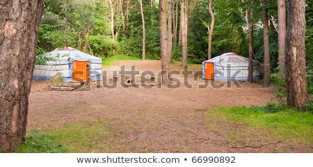 Woodland Campsite Panorama with Colourful Yurts Stock photo © rekemp