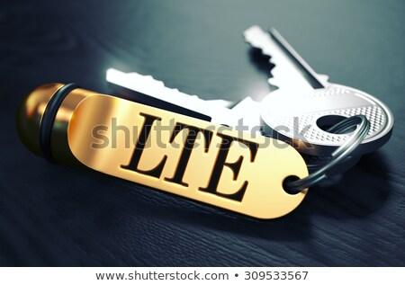 Keys with Word LTE on Golden Label. Stock photo © tashatuvango
