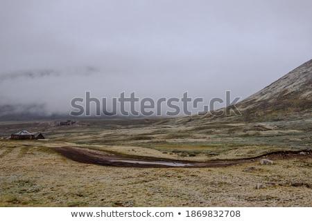 снега плато тумана Кавказ гор Грузия Сток-фото © BSANI