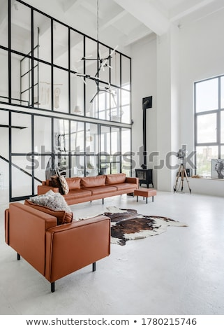 modern armchair and sofa stock photo © ozaiachin