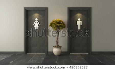 nyilvános · fürdőszoba · repülőtér · terv · belső · építészet - stock fotó © frameangel