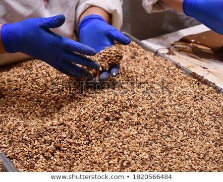 Closeup woman working with buckwheat Stock photo © zurijeta