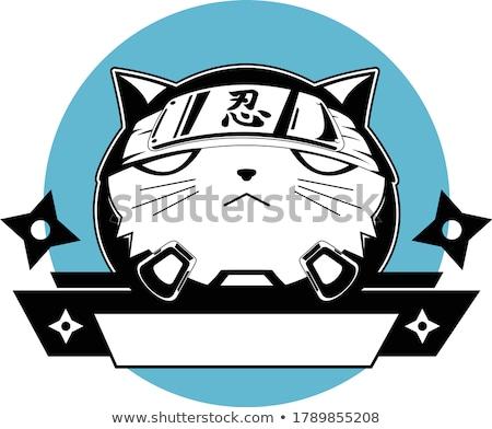 ниндзя кошки талисман дизайна синий Сток-фото © ridjam