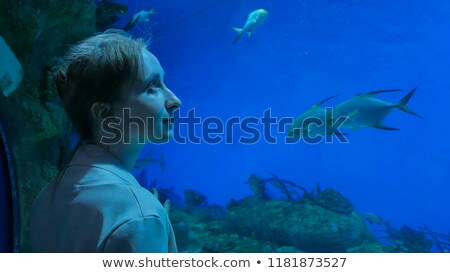 Visiteurs aquarium illustration fille poissons verre Photo stock © adrenalina