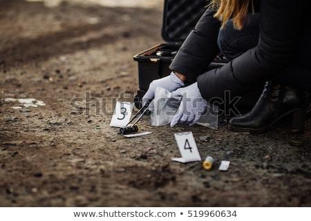 verzamelen · bewijzen · delict · onderzoek · gerechtelijk · onderzoek - stockfoto © lovleah