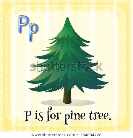 Flashcard letter P is for pine tree Stock photo © bluering