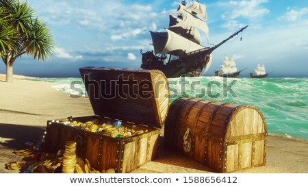 пиратских человека сокровище острове иллюстрация морем Сток-фото © adrenalina