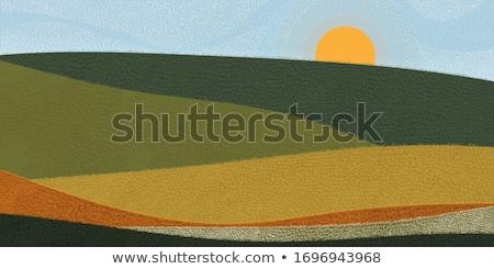 art Spring countryside landscape; morning farmland field and blo Stock photo © Konstanttin