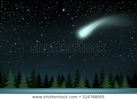 comet falls over the night wood Stock photo © romvo