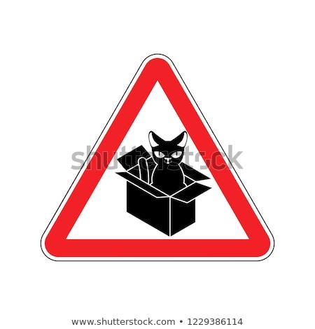 Figyelem macska doboz tilos otthon díszállat Stock fotó © MaryValery