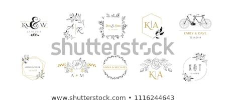 colombe · logo · ligne · vecteur · modèle · unité - photo stock © butenkow