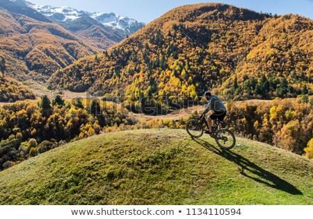 mountain biker riding cycling in green inspiring forest stock photo © blasbike