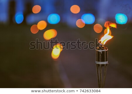 hoguera · fuego · madera · noche · llama - foto stock © ssuaphoto