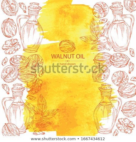 walnut oil in bottle Stock photo © M-studio