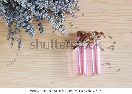Stock photo: Beautiful dried lavender bouquet on pink surface