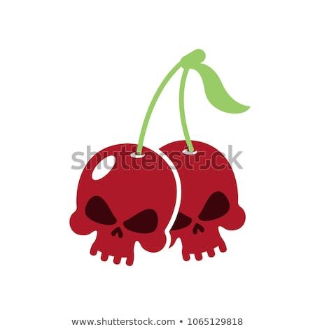 Cherry skull. Deadly berry. Head of skeleton. Vector illustratio Stock photo © popaukropa