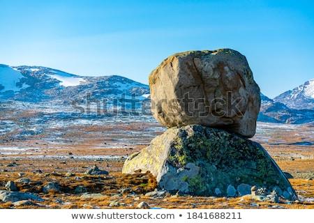 Large stone  Stock photo © wildman