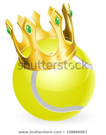 vektor · sport · teniszlabda · tűz - stock fotó © hittoon