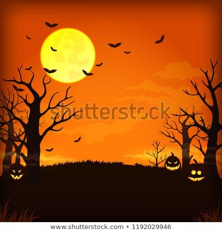 Effrayant halloween flyer modèle vacances bannière Photo stock © Anna_leni