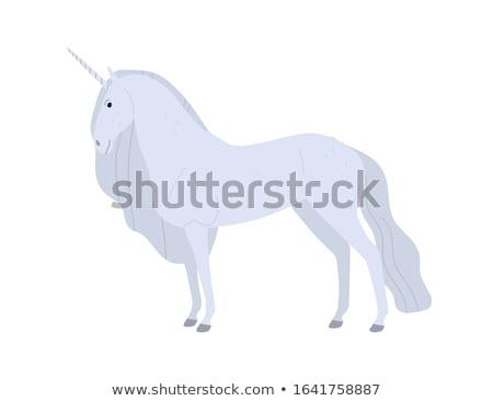 cartoon horses fairy tale legend horned creatures stock photo © robuart