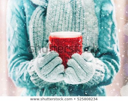 Mano inverno tè mug Foto d'archivio © dolgachov