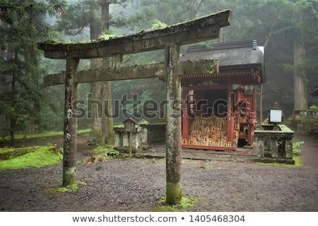 Traditionnel japonais bois pont Japon jardin botanique Photo stock © daboost
