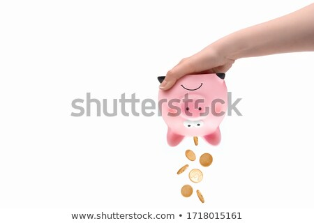 Pink pig piggy Bank and hammer under it on a white background Stock photo © dashapetrenko