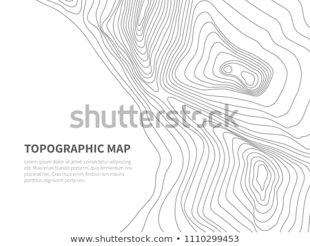 abstract contour lines on white background Stock photo © SArts
