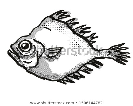 ニュージーランド 魚 漫画 レトロな 図面 スタイル ストックフォト © patrimonio