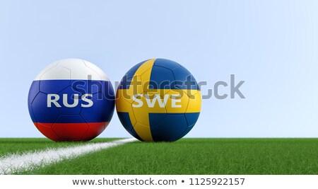 Sweden vs Russia football match Stock photo © olira