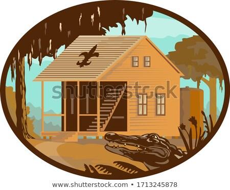 Cajun ház gator ovális retro stílus Stock fotó © patrimonio