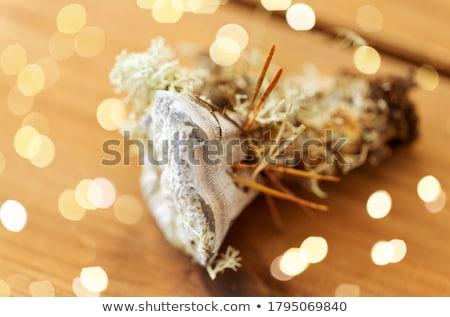 菌 木製 自然 キノコ 環境 森林 ストックフォト © dolgachov