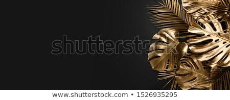 golden creative Stock photo © marinini