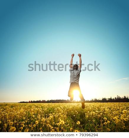 Férfi legelő sport nyár ugrás jókedv Stock fotó © Paha_L