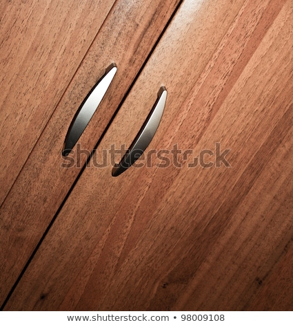 Carpenter with a cupboard door Stock photo © photography33