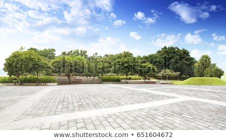 Blue Background with City Landscape Tree and Bench stock photo © WaD
