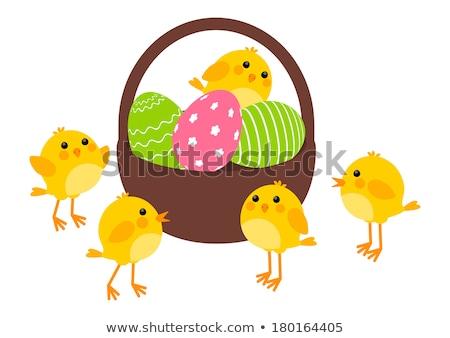 Cesta ovos de páscoa pequeno amarelo frango verde Foto stock © AndreyKr