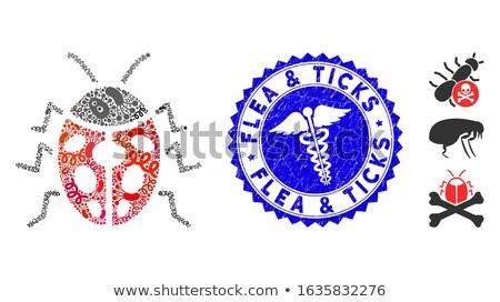 Bélyeg kép katicabogár papír erdő művészet Stock fotó © perysty