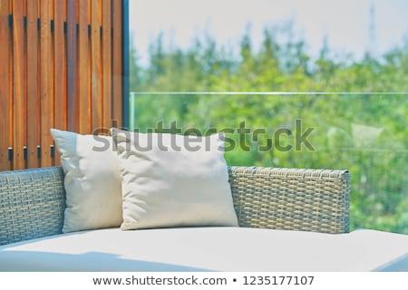 Fehér kanapé szék vánkos belső szoba Stock fotó © ziprashantzi