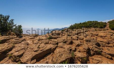 Panorámakép légifelvétel Marseille hegy Franciaország ház Stock fotó © Discovod